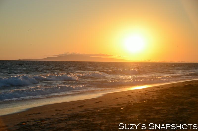 SuzysSnapshots_HuntingtonBeach_July21-18.jpg