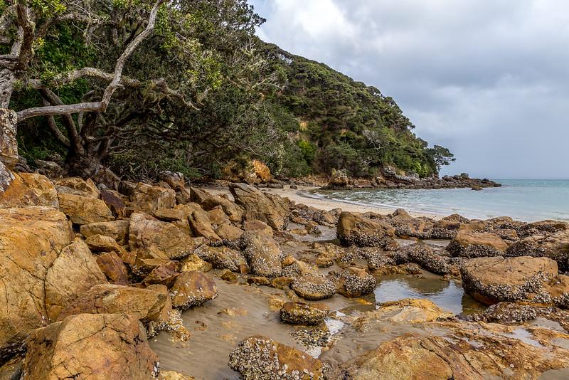 An der Parakerake Bay