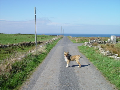 Miltown Malbay