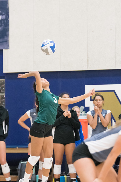 HPU Volleyball-91822.jpg