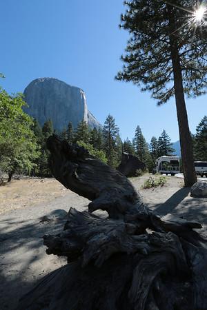 2012-07-02 Mon: 02 Yosemite