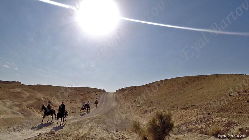 Sirin Riders 6.jpg