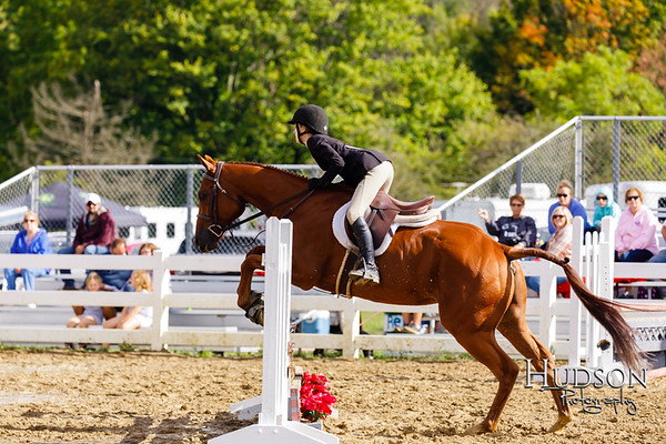 20 Low Equit over Fences