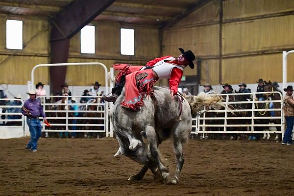 Hoggan Saddle Series - Kick off Rodeo