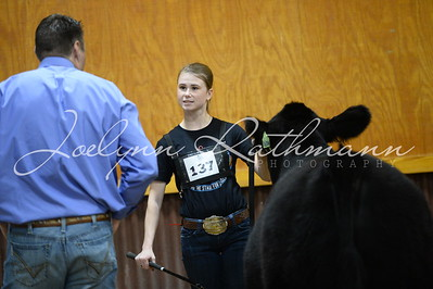 Buckle Showmanship - 16 and Up