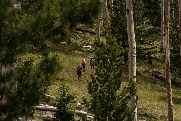 2017-06-03 Kachina Trail Flagstaff