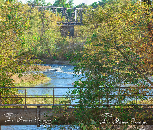 Trestle Trail & Riverview Rookery
