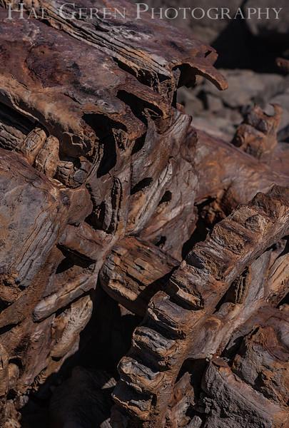 The Wreck of a 1920's era Power Shovel Goat Rock Beach, Bodega Bay, California 1207BB-PSW7
