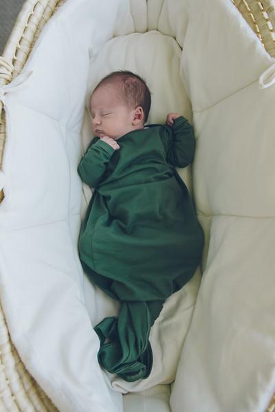 Rowan Chapman Fresh48 newborn Minneapolis St Paul Twin Cities Northfield newborn birth photographer-80.jpg