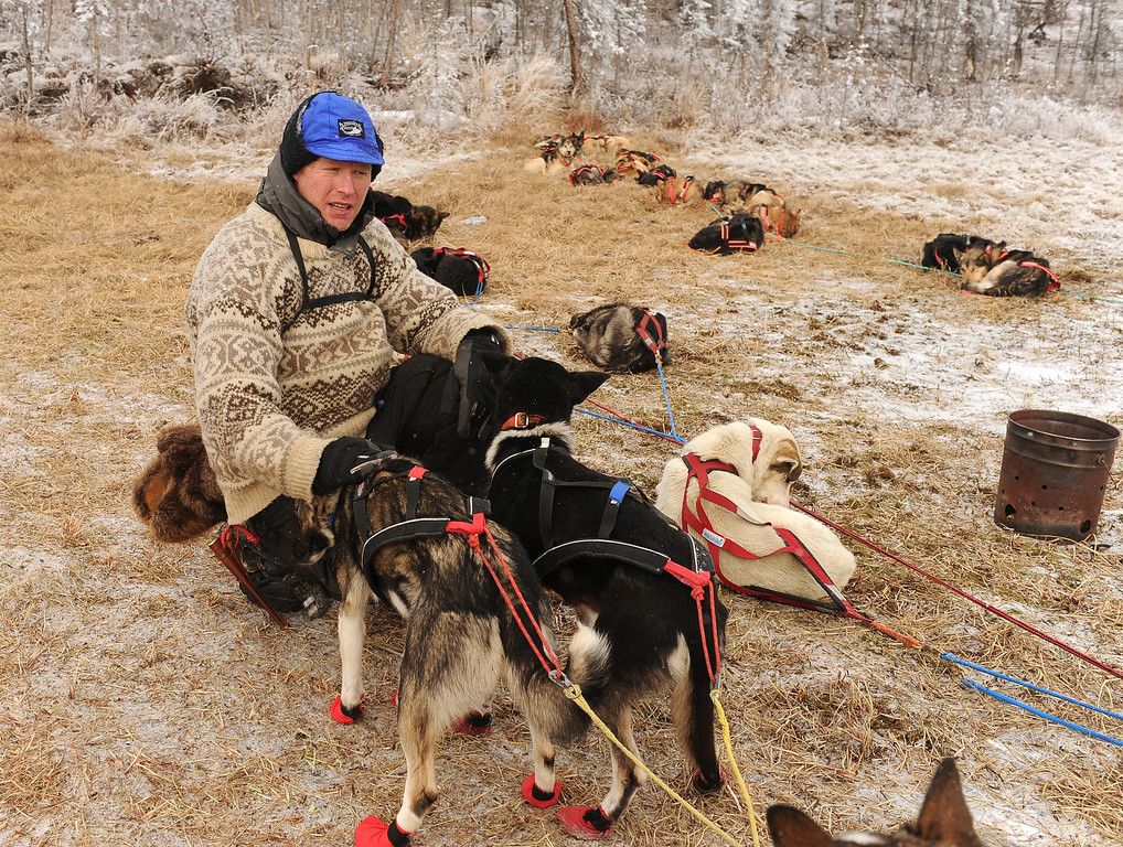 . In this Tuesday, March 4, 2014 photo, Mats Pettersson crouches down with the leaders of his team as he prepares to continue across the Farewell Burn after a brief stop during the Iditarod Trail Sled Dog Race, Tuesday, March 4, 2014. (AP Photo/The Anchorage Daily News, Bob Hallinen)