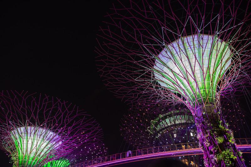Singapore-19-196.jpg