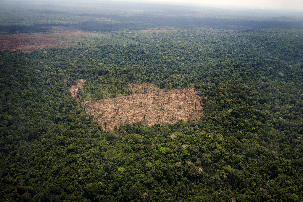 """. View of a deforested area in the middle of the Amazon jungle during an overflight by Greenpeace activists over areas of illegal exploitation of timber, as part of the second stage of the \""""The Amazon\'s Silent Crisis\"""" report, in the state of Para, Brazil, on October 14, 2014. RAPHAEL ALVES/AFP/Getty Images"""