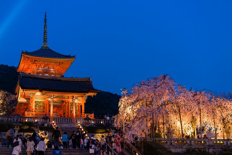 Kyomizu Temple at Night