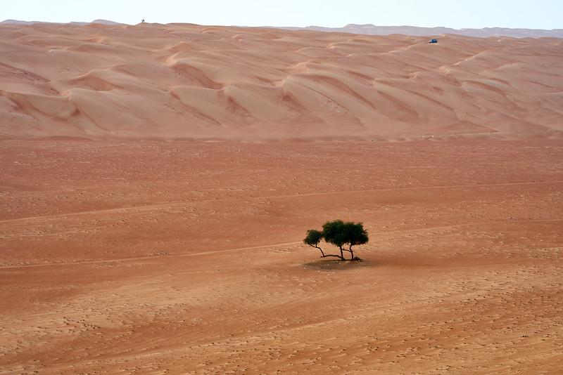 Oman_DSC07278.jpg
