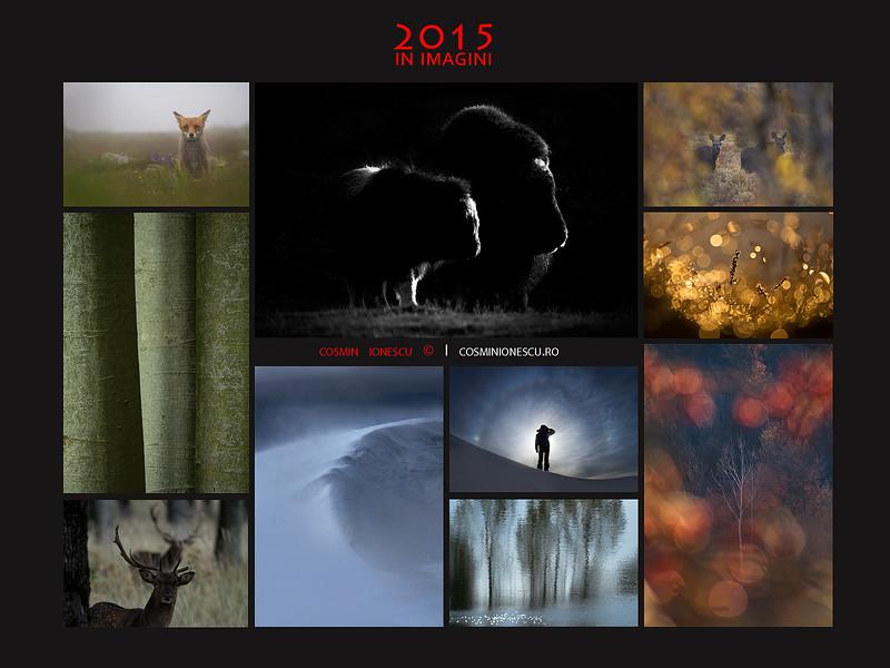 2015-web.jpg