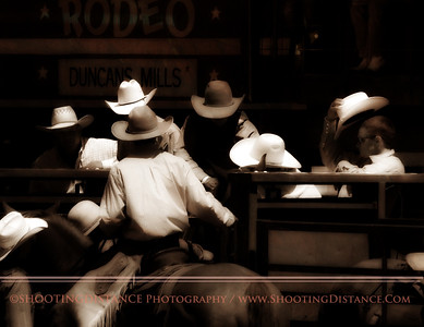 All Hats, No Cattle. Cowboys Calm a Bronco in the Chute at the Russian River Rodeo, 2010