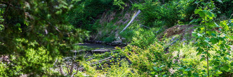 05-28-2014 - Radnor Lake State Park