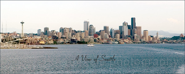 """""""A View of Seattle 8x20"""" Panoramic pictures available in Large Prints Gallery"""