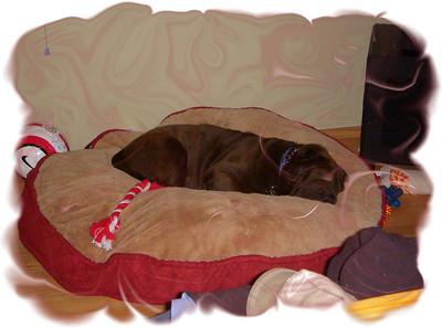 12 Feb 08_3rd night as a Riley