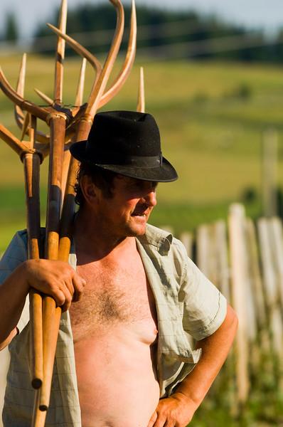 Europe, Romania, Transylvania, The Apuseni Mountains, Marisel village, hay harvest, farmer