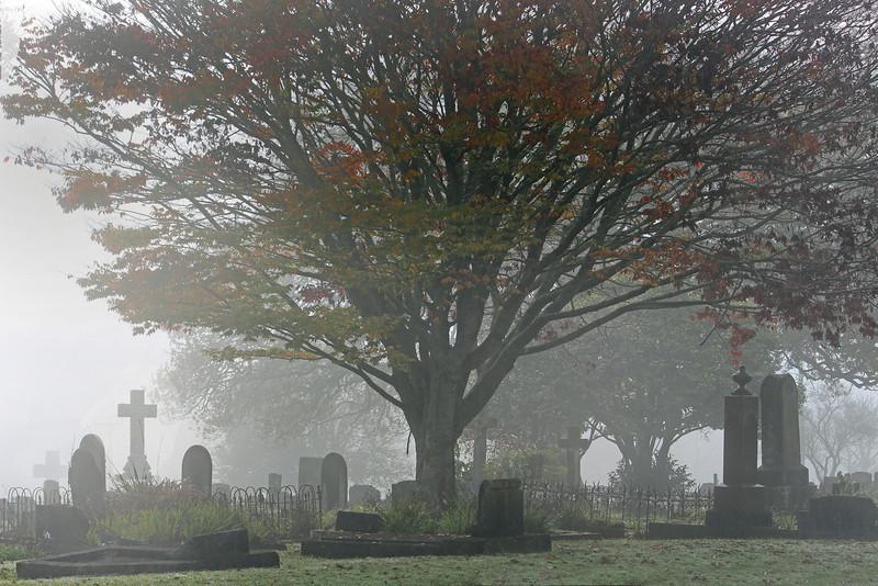 Image 3  Hamilton Cemetary on foggy day - Rest in Peace_edited-1.jpg