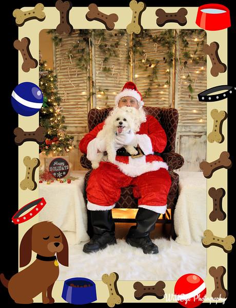 2016 Santa Paws - Tucker