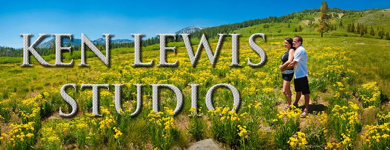 meadow flowers 3270 46mp-Edit2.jpg