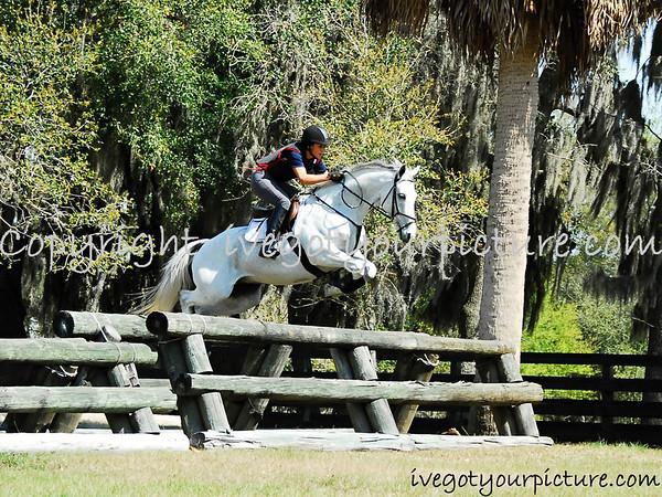 2013 Equestrian Events
