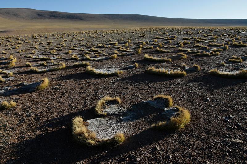 Bolivia-Peru0155.jpg