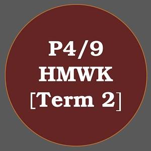P4/9 HMWK T2