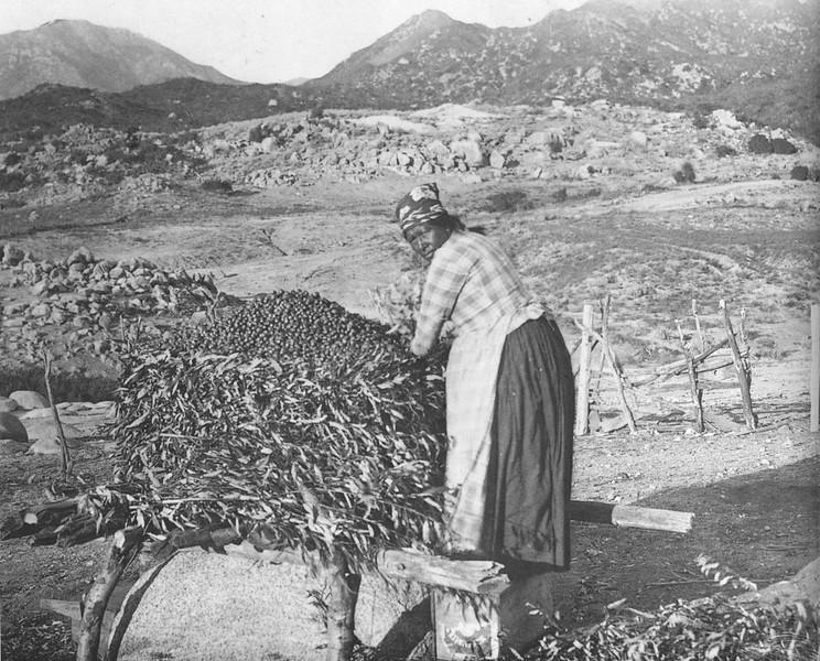 1900-elpueblothehistoricheartofla-010.jpg