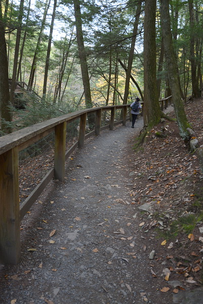 Childs Park trail.JPG