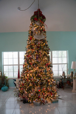 Joan Christmas Tree 12 feet