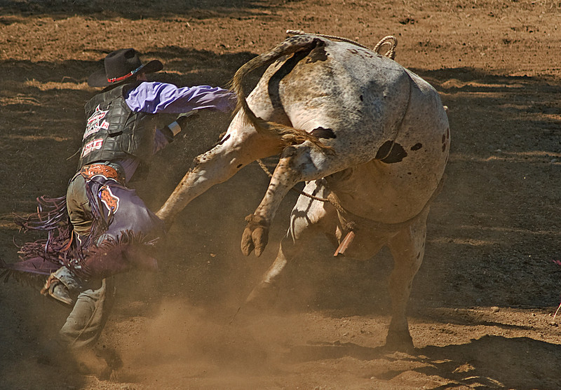COOMBS RODEO-2009-3772A.jpg