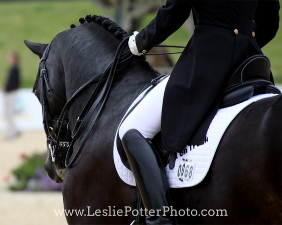 2010 Kentucky Cup Dressage