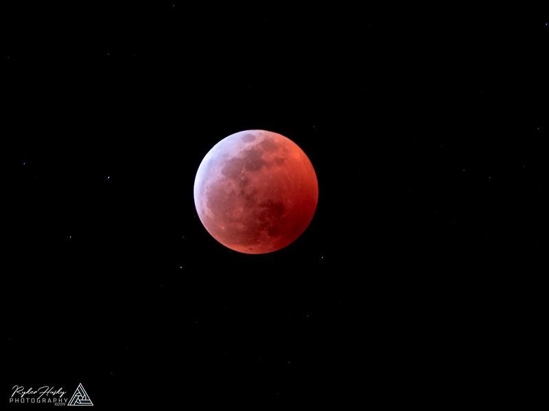Super Blood Wolf Moon-003.jpg