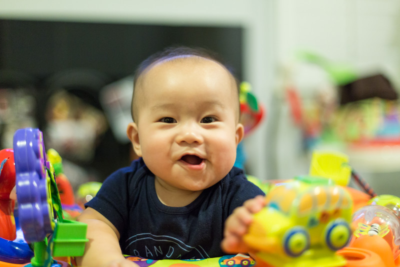 oliver_playing_20150805-12.jpg