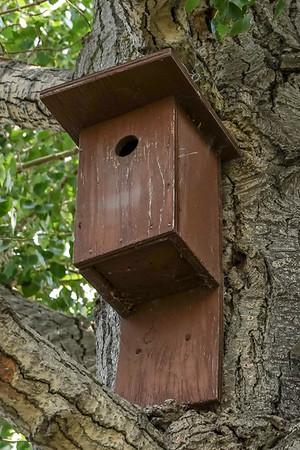 7-25-18 Jim's Bird Houses
