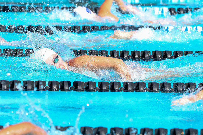 10.30.18 CSN Swim-Dive Districts-380.jpg