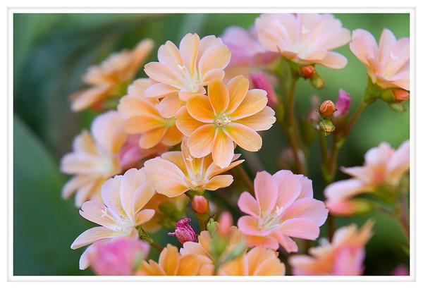 2012-05-10 Blog Posting