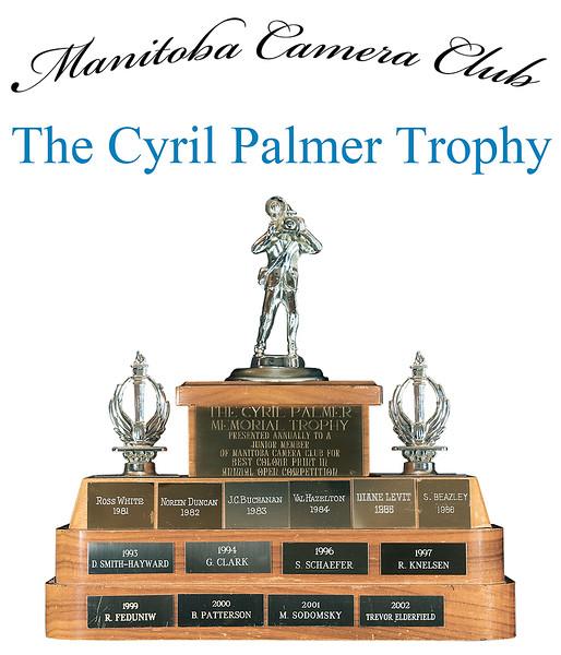 The Cyril Palmer Trophy 4.jpg