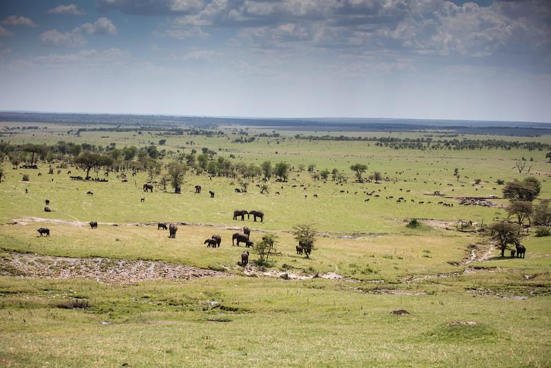 Africa - 101416 - 2498.jpg