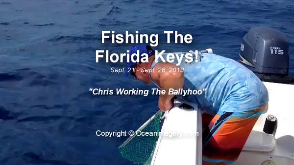 20131005 Marathon, FL - Fishing The Florida Keys
