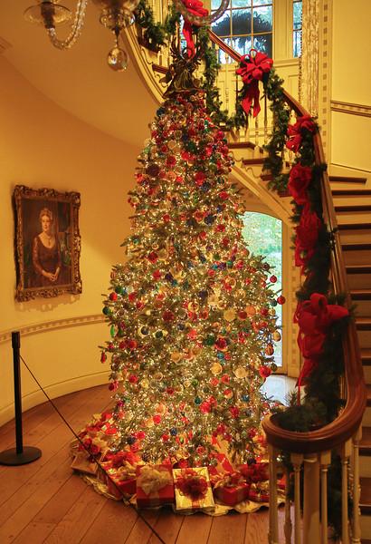 The Philadelphia Hall Christmas Tree