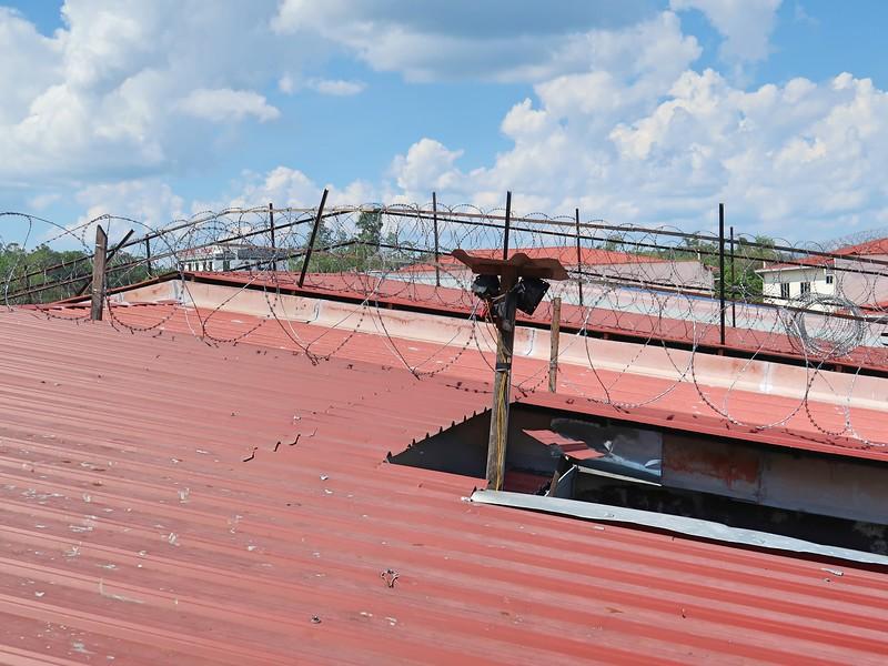 IMG_5147-bird-nest-roof.jpg