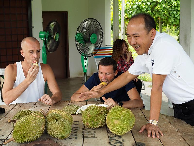 Lucky-durian-farm-eating-durian.jpg