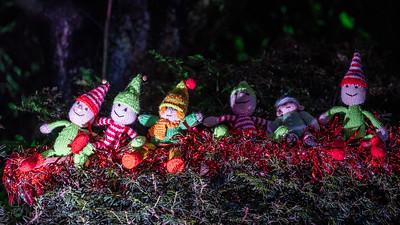 Illuminated Winter Wonderland 2019