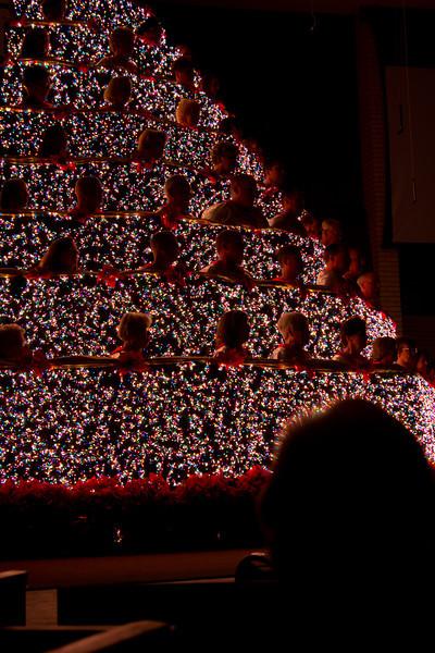 Living Christmas Tree 2011