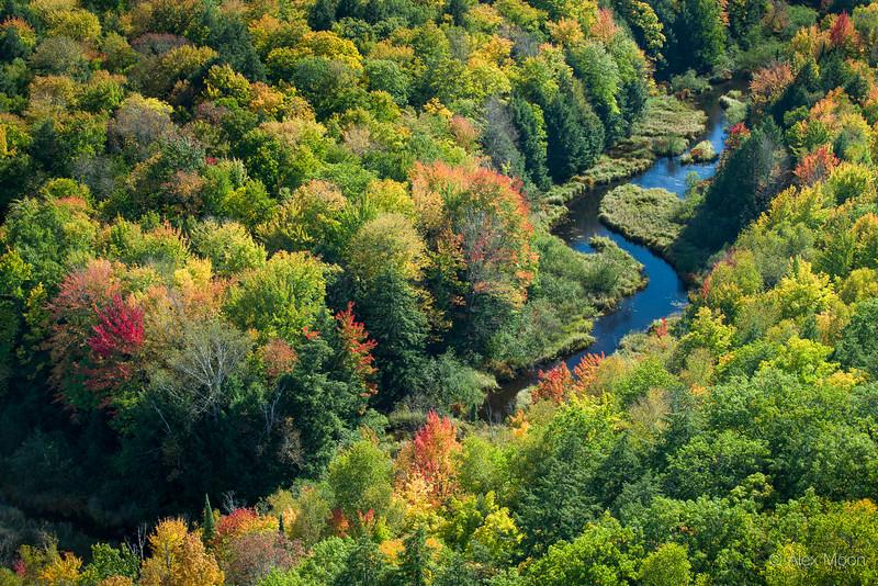 Upper Carp River
