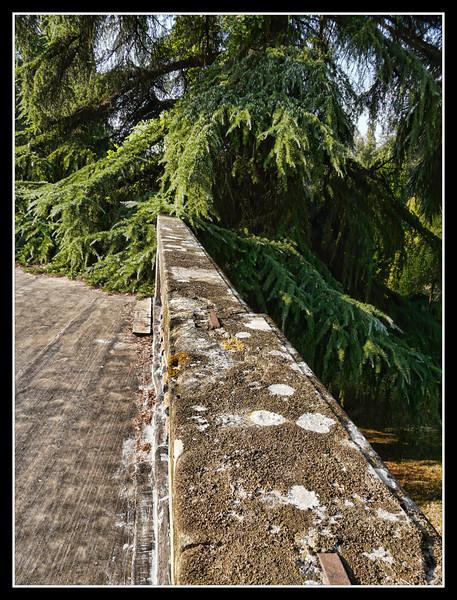 2006-09 Villa di Rusciano 051.jpg